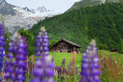 Tour Du Mont Blanc Wall Art - Photograph - An Old Wooden Hut In A Mountain Meadow by Menno Boermans