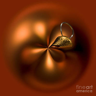 Golden Orb Photograph - An Orb Of Orange by Anne Gilbert
