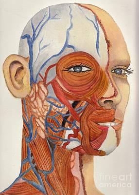 An Organ Donor Art Print