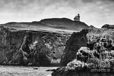 Photograph - Anacapa Island Lighthouse B/w by David Millenheft