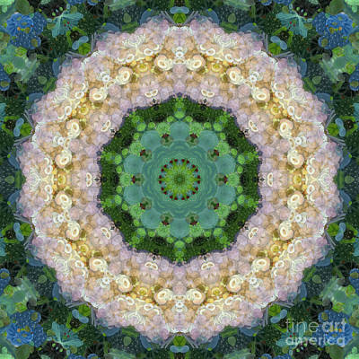 Mixed Media - Anahata Rose by SiriSat