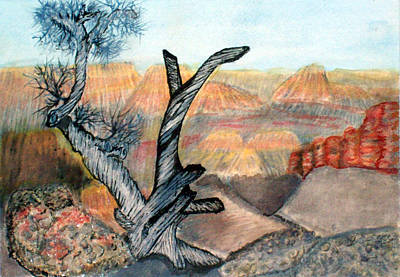 Painting - Anceint Canyon Watcher by Tim Longwell