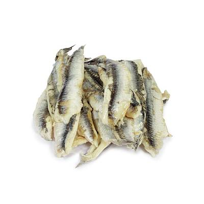 Fish Fillet Photograph - Anchovies by Geoff Kidd