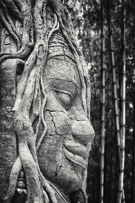 Bamboo Photograph - Ancient Buddha Stone Head by Adam Romanowicz