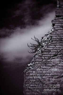 Photograph - Ancient Crumbled Wall by Silvia Ganora