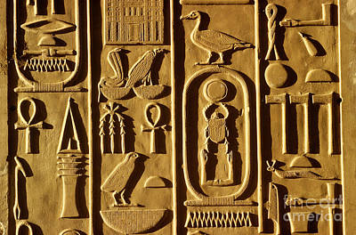 Ancient Egyptian Hieroglyphs Art Print by Farrell Grehan