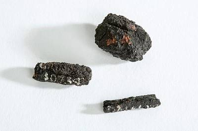 Ancient Jewelry Photograph - Ancient Egyptian Meteoric Iron Beads by Petrie Museum Of Egyptian Archaeology, Ucl