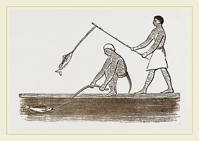 Angling Drawing - Ancient Egyptians Angling by Litz Collection