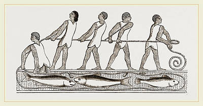 Drag Drawing - Ancient Egyptians Fishing With Drag-net by Litz Collection
