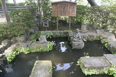 Photograph - Ancient Pond by Masami Iida