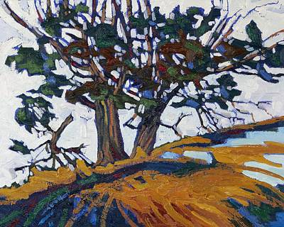 Thousand Islands Painting - Ancient Red Cedars by Phil Chadwick
