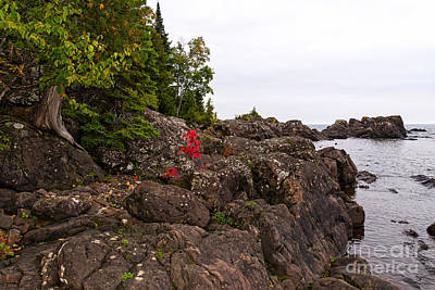 Photograph - Ancient Rocks Of Lake Superior by Les Palenik