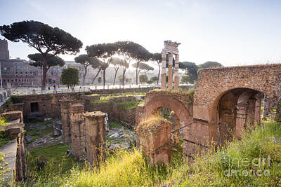 Tree Photograph - Ancient Roman Ruins Rome Italy by Matteo Colombo