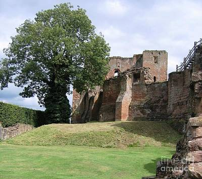 Photograph - Ancient Tree And Castle by Denise Railey