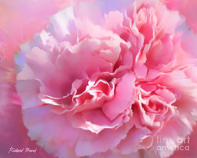 And A Pink Carnation Art Print