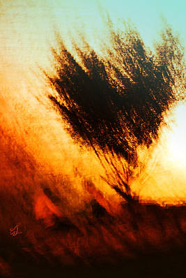 Soil Digital Art - The Bush Burned .. And The Bush Was Not Consumed by Music of the Heart