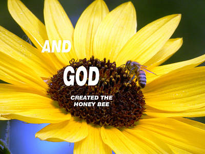 Photograph - And God Created The Honey Bee by Belinda Lee