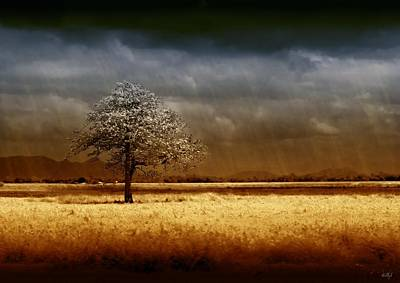 Fields Digital Art - And The Rains Came by Holly Kempe