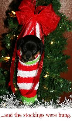 Photograph - ...and The Stockings Were Hung. by Deena Otterstetter