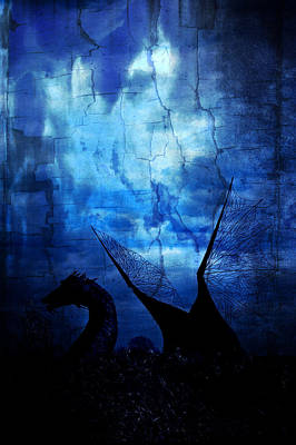 Photograph - And There Be Dragons by Rhonda Barrett