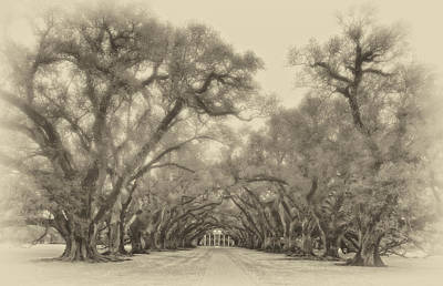 Live Oaks Digital Art - And Time Stood Still Sepia by Steve Harrington