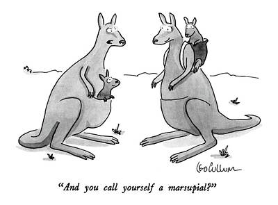 Kangaroo Drawing - And You Call Yourself A Marsupial? by Leo Cullum