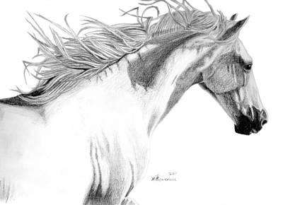 Fusion Drawing - Andalusian Fusion by Kayleigh Semeniuk