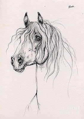 Andalusian Horse Drawing - Andalusian Horse 2014 02 25 by Angel  Tarantella