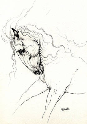 Horses Drawing - Andalusian Horse Drawing 05 11 2013 by Angel  Tarantella
