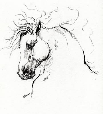 Horse Portrait Drawing - Andalusian Horse Drawing 1 by Angel Ciesniarska