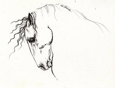 Andalusian Horse Drawing - Andalusian Horse Portrait 2014 05 16 by Angel  Tarantella