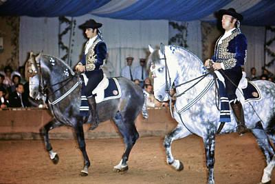 Andalusian Show Horses Art Print