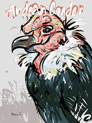 Condor Drawing - Andean Condor by Brett LaGue