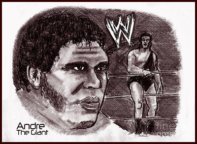 Drawing - Andre The Giant by Chris  DelVecchio