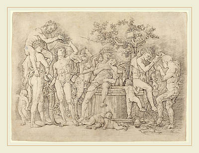 Italian Wine Drawing - Andrea Mantegna Italian, C. 1431-1506, Bacchanal by Litz Collection