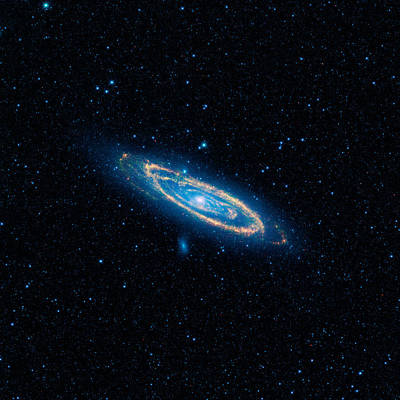 Andromeda Galaxy And Companions Art Print by Celestial Images