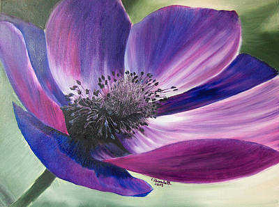 Painting - Anemone Coronaria by Claudia Goodell