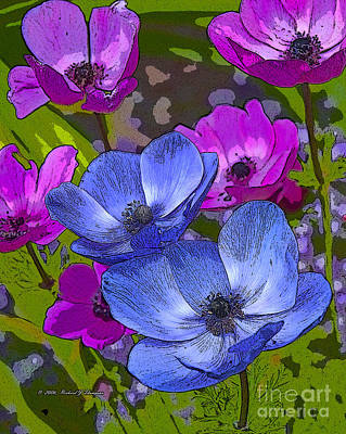 Photograph - Anemones  by Richard J Thompson