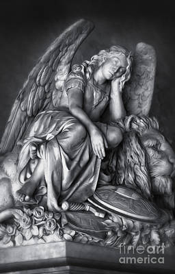 Digital Art - Angel And Lion by Gregory Dyer