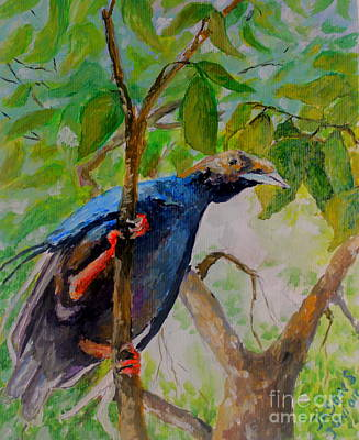 Mangrove Forest Painting - Angel Bird Of  North Moluccas by Jason Sentuf