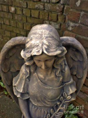Photograph - Angel by Chris Anderson