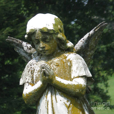 Photograph - Angel In Prayer by Patricia Januszkiewicz