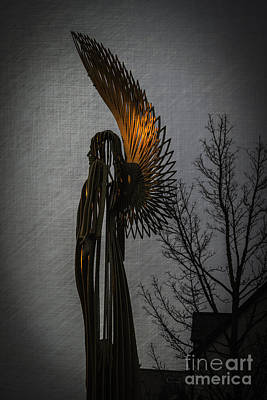 Photograph - Angel In The Morning by Steve Purnell