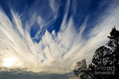 Photograph - Angelic Clouds 6 by Terry Elniski