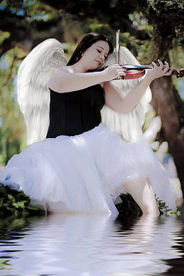 Photograph - Angelic Music by Shelly Stallings