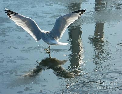 Angelic Wings Art Print