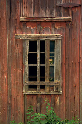 Photograph - Angelica Barn Window by Guy Whiteley