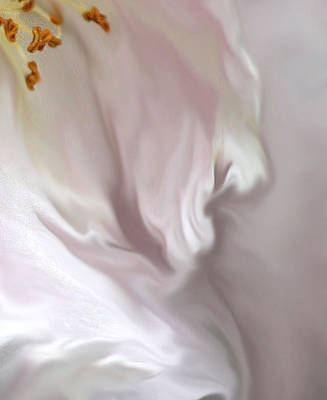 Delicate Painting - Angel's Prayer by The Art Of Marilyn Ridoutt-Greene