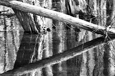 Lakeview Photograph - Angles And Reflections by Dan Sproul
