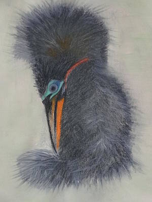 Pastel - Anhinga by Nancy Fillip